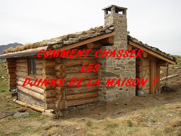 Comment chasser les djinns de la maison for As tu un animal a la maison