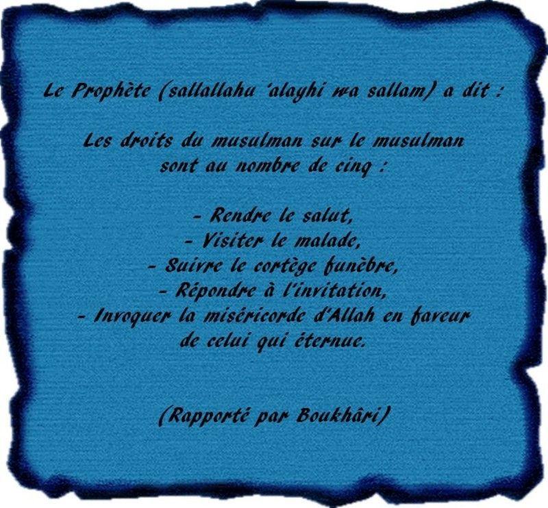 Préférence la fraternite humaine en islam m zenati GM68